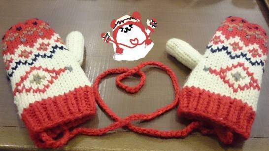 himo_glove (1)