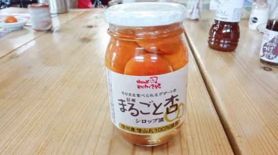 nagano-ajirodge-wakuwaku-sakaki[24]