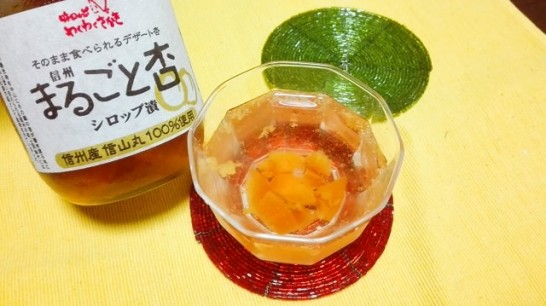 nagano-ajirodge-wakuwaku-sakaki[27]