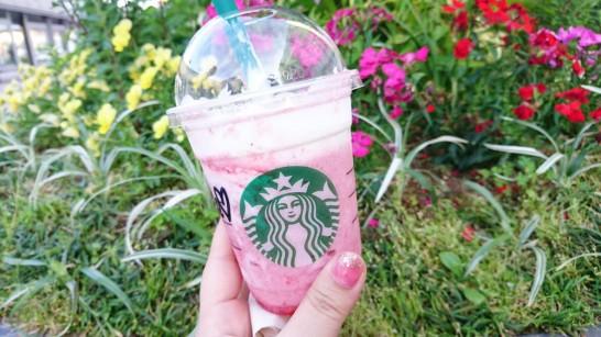 strawberry-delight-frappuccino[7]