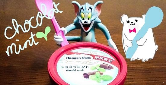 dazs_chocolat_mint
