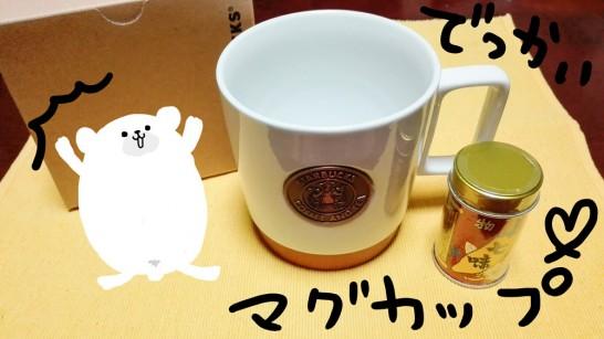 starbucks-anniversary-heritage-siren-logo-mug (3)