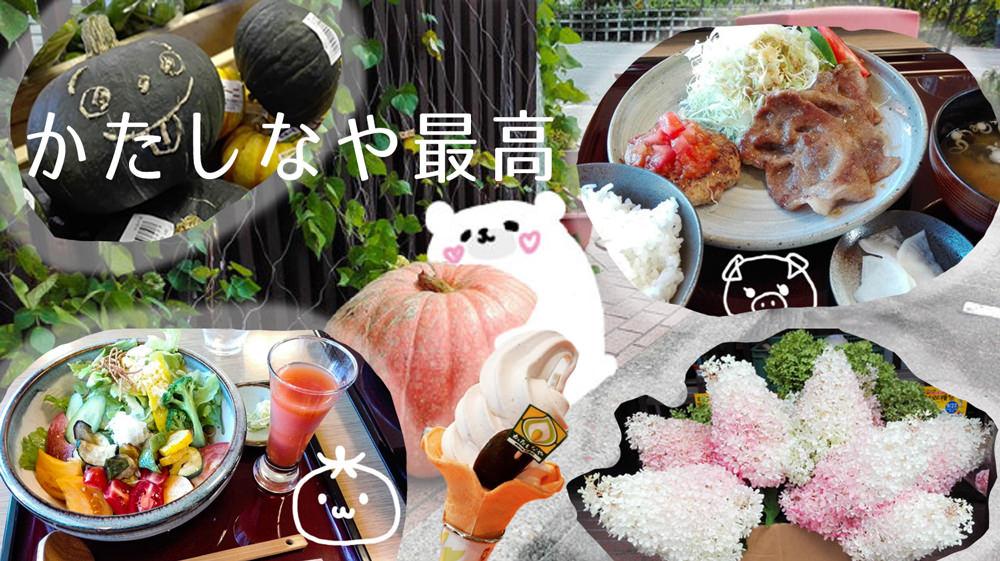 【群馬・片品村】花豆ソフトと尾瀬ドリームポークがおいしい!新鮮お野菜も激安な「かたしなや」が最高!