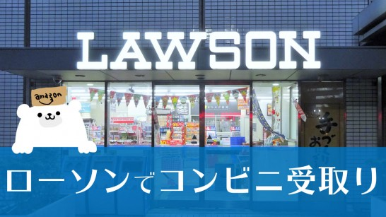 lawson-net-shopping[3]
