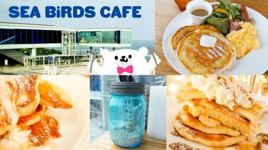 SEA BiRDS CAFE(シーバーズカフェ)アイキャッチ画像
