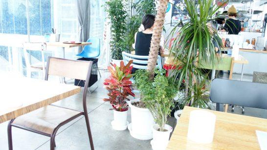 seabirds-cafe27